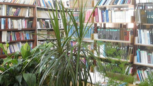 http://www.odlican.com/d/11231-2/itaonica+u+biblioteci+Ku__evo+Nikola+Sikimi__+-+Maksim.jpg