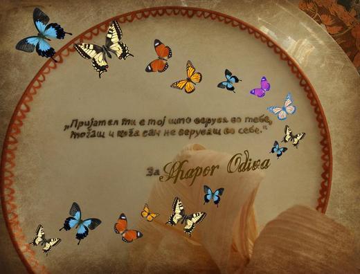 http://www.odlican.com/d/12182-2/shapor.jpg