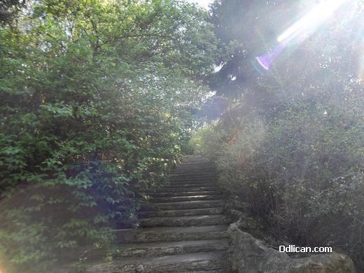 http://www.odlican.com/d/15287-3/Cudni+su+putevi.JPG