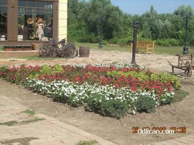 http://www.odlican.com/d/3134-3/cvetnjak.jpg