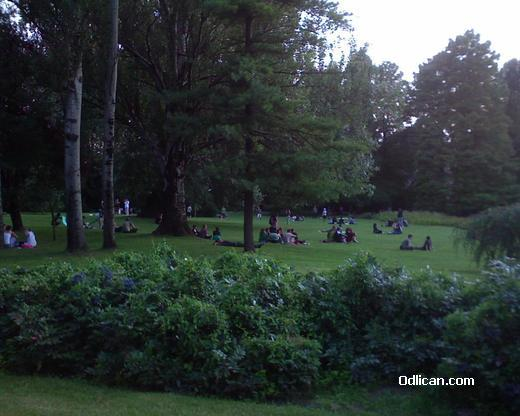 http://www.odlican.com/d/5175-3/novosadjani-u-parku.jpg