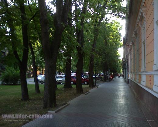 http://www.odlican.com/d/6489-2/inter-caffe-wallpaper-vrbas.jpg