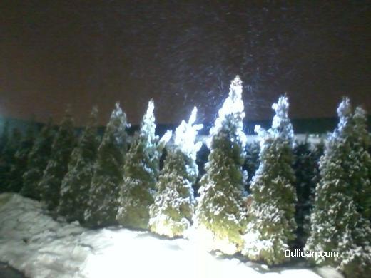 http://www.odlican.com/d/9376-3/vojvodjanska+zima.jpg