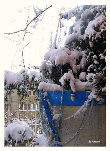 svečano, od snega belo